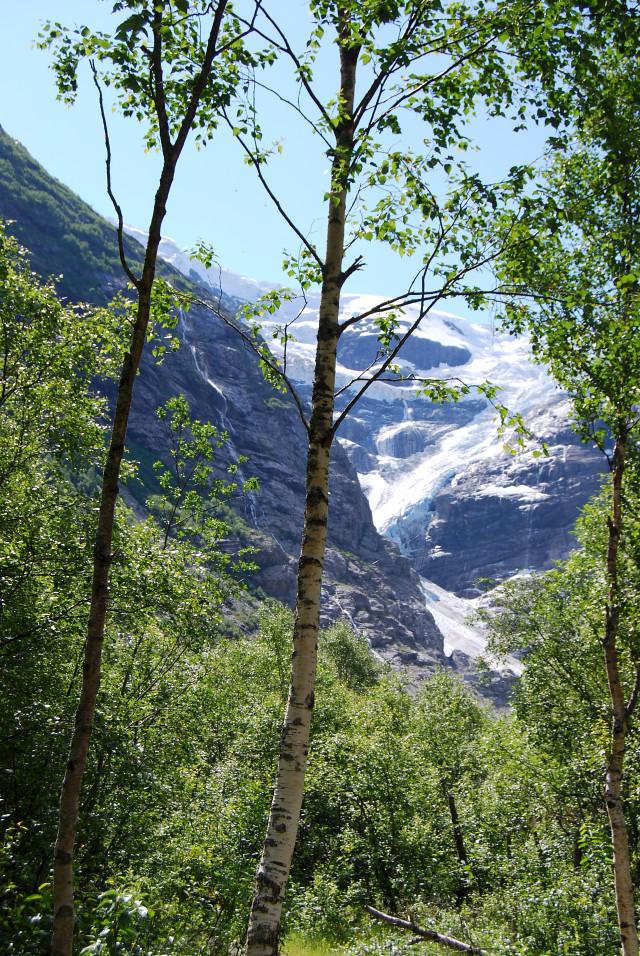 Olden Glacier 2