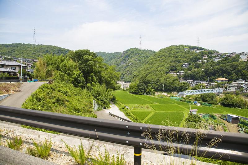 武庫川渓谷廃線ハイキング(生瀬ー武田尾)502