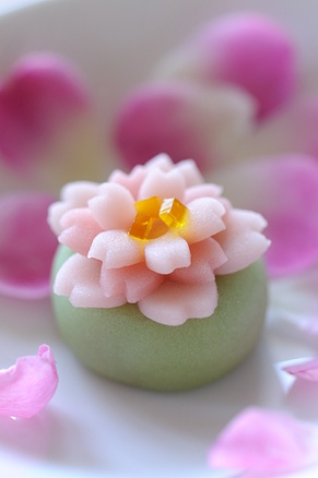 Wagashi green and pink Pin