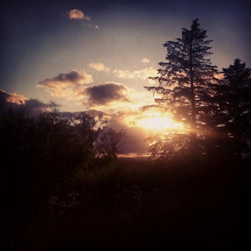 Irish skyline & yesterday's sunset at RosCommon