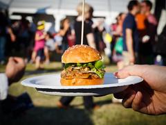 meal, hamburger, food, dish, fast food,