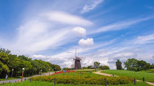 park travel blue red sky cloud tree green windmill grass japan landscape ed nikon day cloudy f14 14 adventure explore salvia osaka 24 24mm af nikkor typhoon afs tsurumi ryokuchi explored f14g d3s