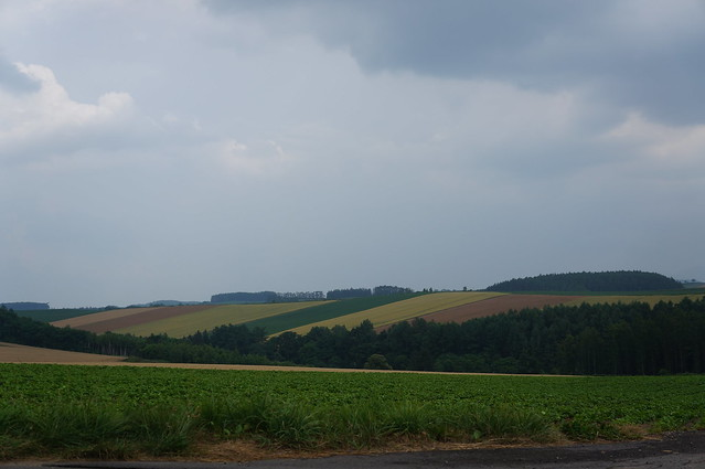 patchwork_hills