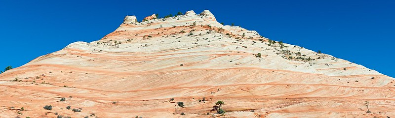 Waves on Mountain - Zion National Park