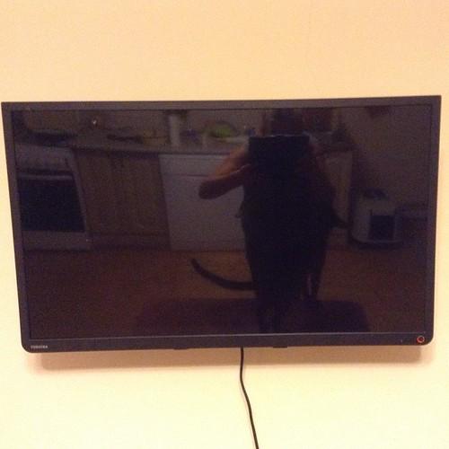 Первый в моей жизни собственный телевизор. Я его купила на НГ в подарок Пете, но он оказался неисправный и кочевал по сервисам))) ну что - Петя посмотрел за ужином мультик Кошкин дом, а мне он и вовсе не нужен))))