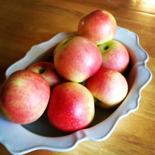 Zestar apples for a fresh apple crisp #jerseyfresh | www.famfriendsfood.com