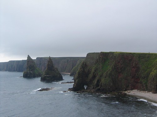 Duncansby 2014 (7)