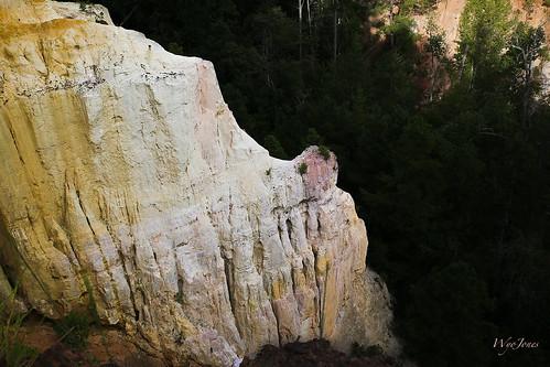 pink trees red orange cliff usa white yellow georgia sand purple flute shades canyon redclay erosion ridge clay strata np silt gully lumpkin georgiaclay unconformity providencecanyonstatepark streamerosion wyojones providencecanyonstateoutdoorrecreationarea