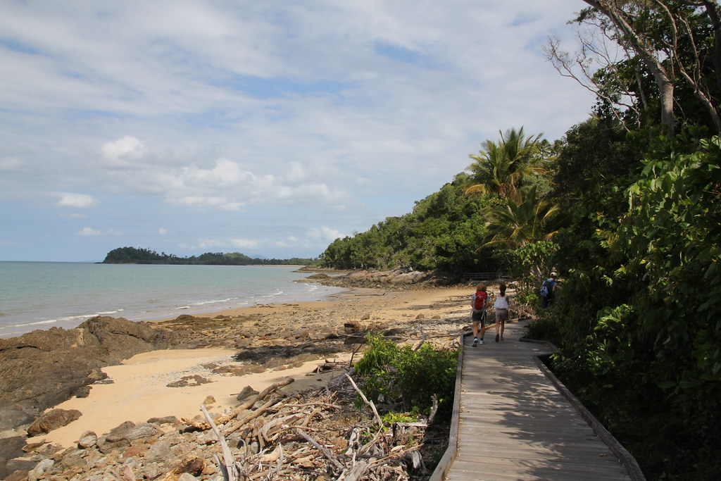 mission beach, ecoviilage resort, dunk island, licuala state forest, clump point, golden orb spider, lugger bay, cassowary, kennedy walking track
