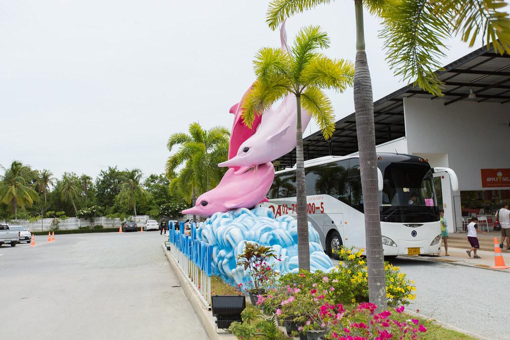 粉红海豚乐园,金三角风情