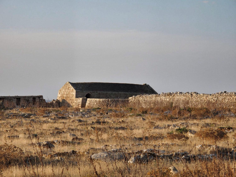 reharq_Societat Històrico Arqueològica Martí i Bella_visita_Pont _NNT