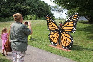 Using a Monarch Cut out