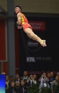 Trampoline WCh Odense/DEN 2015: ZHANG Kuo/CHN