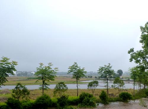 Zhejiang-Cangpocun (9)
