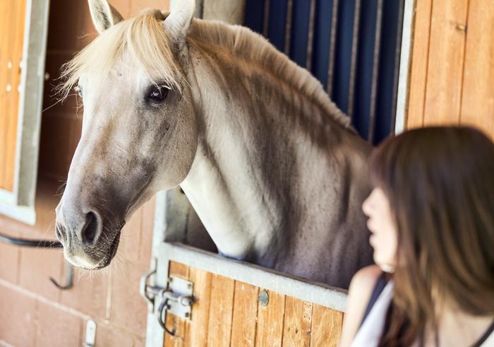 street style barbara crespo fashion blogger outfit blog de moda horses zara