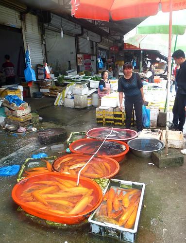 Zhejiang-Yantoucun (87)