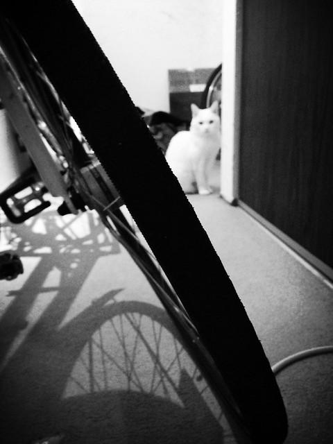 Cloud Avec Vélo
