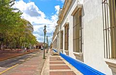 Barinas / Edo. Barinas / Venezuela