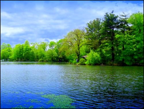 newyork brooklyn spring image prospectpark dmitriyfomenko spring102014