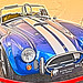 SHELBY COBRA HDR