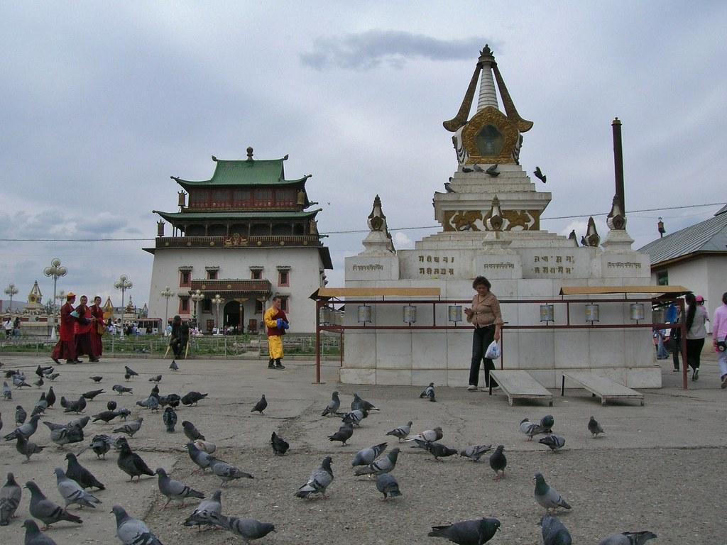 Mongolia – Call of the wild - Alvinology
