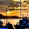 In the glow of the morning  Photo  taken  at  Lyme  Regis  UK  #central_boat