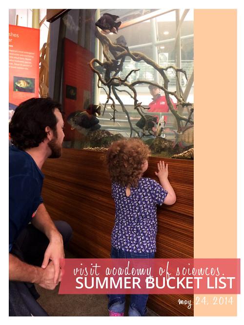 2014 Summer Bucket List: Visit Academy of Sciences