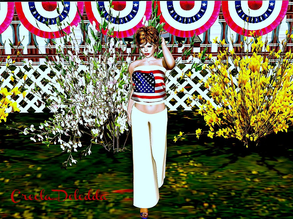 July 4 2014 Outfit 3.3_001