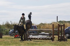 Southern agricultural show 2014 - Sunday (48)