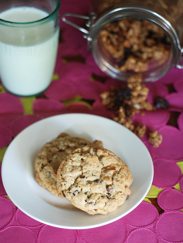 GranolaOatmealCookies3