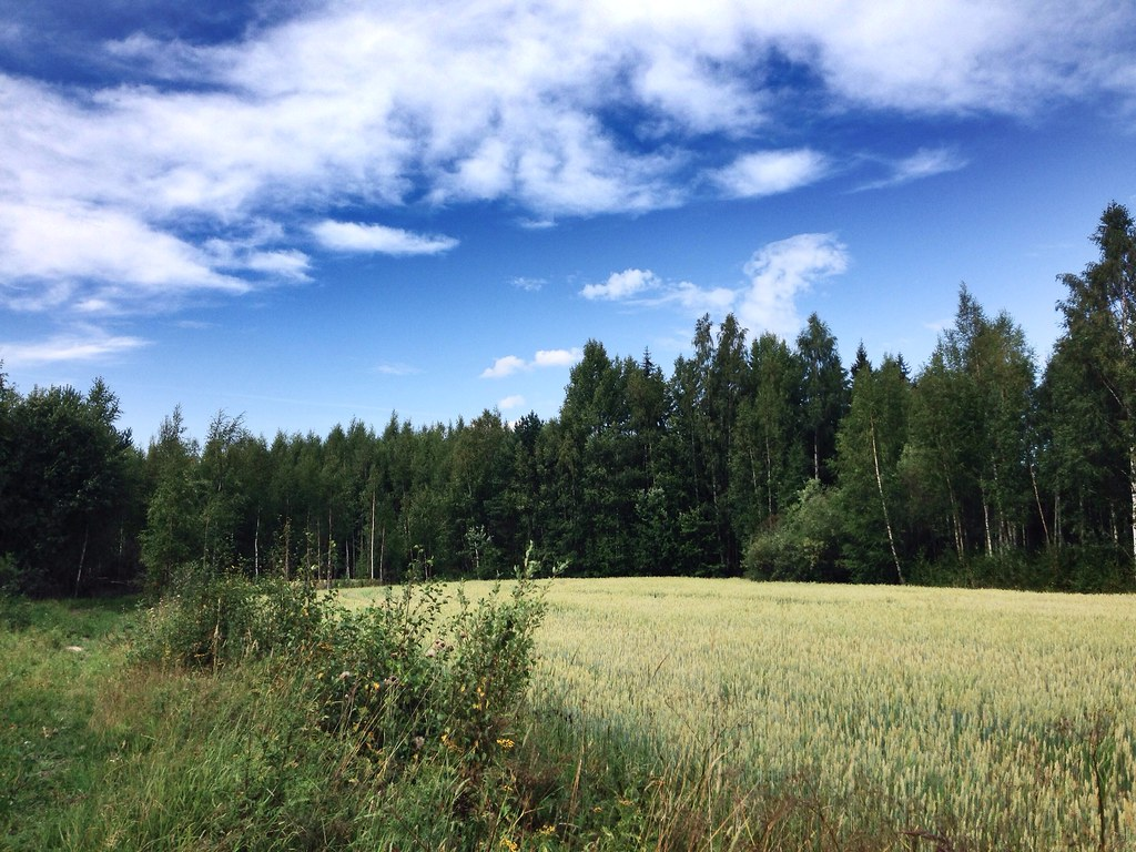 Finnish countryside.