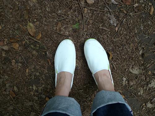 クロックス ストレッチ ソール ローファー ウィメン stretch sole loafer w
