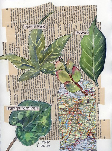 watercolor collage