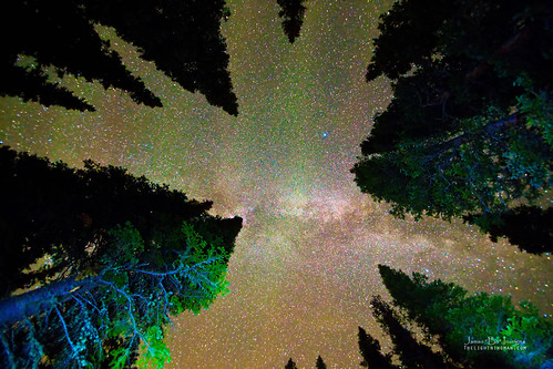 trees sky mountains nature forest canon reflections stars landscape colorado skies view astrophotography astronomy rockymountains wilderness frontrange overhead pinetrees milkyway 6d indianpeaks bouldercounty indianpeakswildernessarea jamesboinsogna