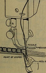"""Image from page 472 of """"Science for beginners"""" (1921)"""
