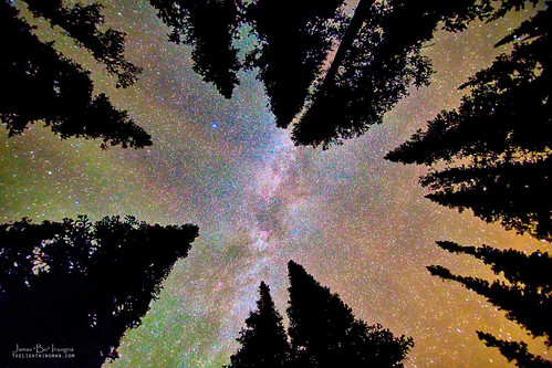 trees sky panorama mountains nature up forest canon reflections stars landscape big woods colorado skies looking view astrophotography area astronomy rockymountains wilderness overhead upward milkyway bouldercounty jamesboinsogna