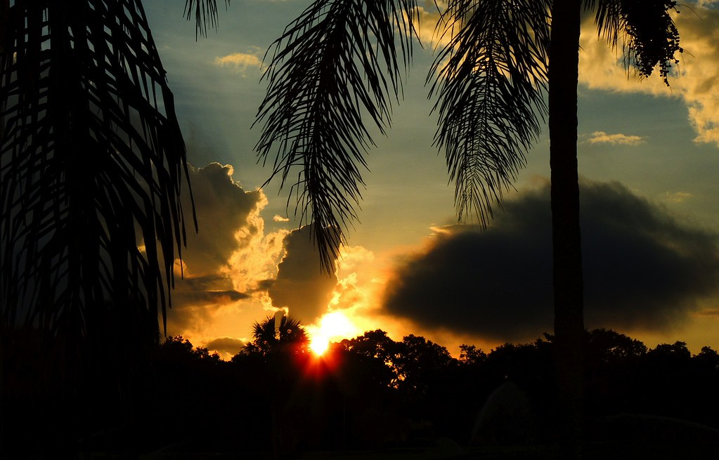 Friday Sunrise, Bradenton, Florida