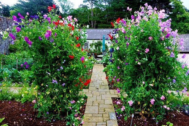 Glenarm Castle's Gardens