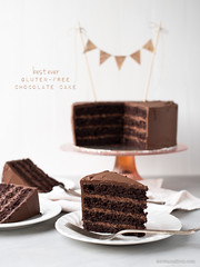 Best Ever Gluten-Free Chocolate Cake