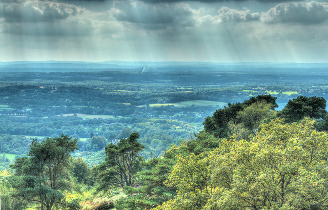 The View from Leith Hill Tower