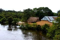 Un río en el camino