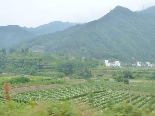 Anhui--Tunxi-Huangshan-Bus (29)