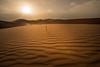 Back to Desert Photos