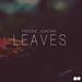 Freddie Joachim / Leaves