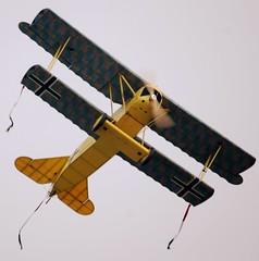Fokker D.VII Model