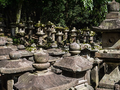 Lanterns in Nara park