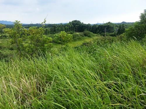 圖為統一夢世界位於台南市玉井區的預定地,占地300公頃 涉及多項違法水土保持案、並占用國有地
