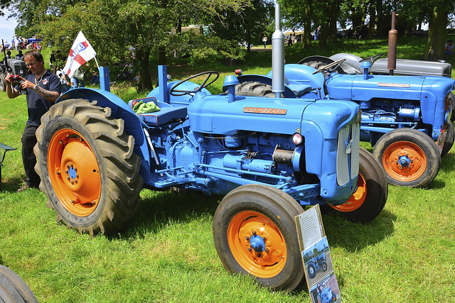 1961 Fordson Dexta Tractor : Woolpit steam rally vintage tractors fordson dexta