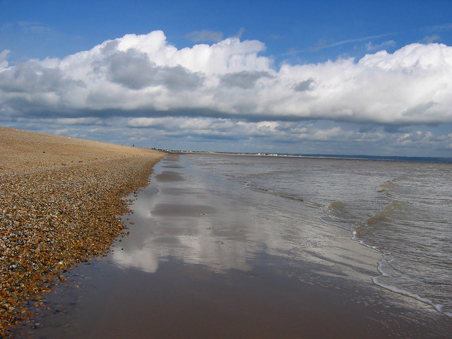 The coast near Dungeness
