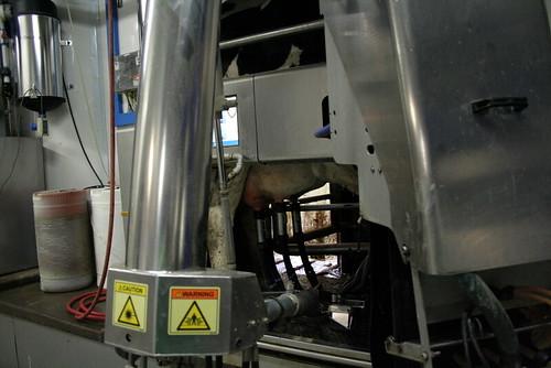 Robotic Milker 2